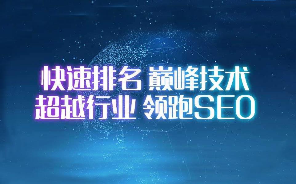 逆冬seo快速排名实战讲解价值4800元VIP教程(带点击工具)