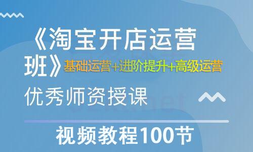 淘宝开店营运视频教程100节从基础运营+进阶提升+高级运营