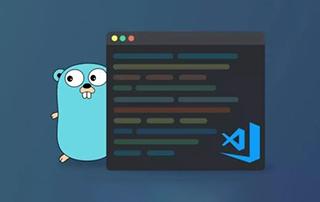 Go语言视频教程+电子书