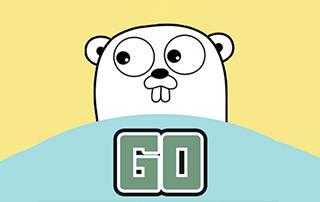 GO语言入门到精通系列视频教程