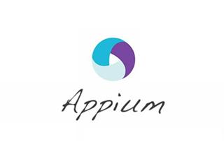 Appium 安卓自动化测试视频教程