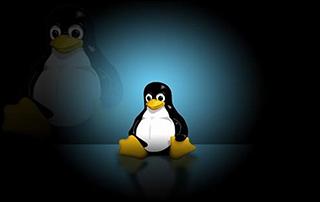千锋Linux云主机系统管理及服务配置实战教程