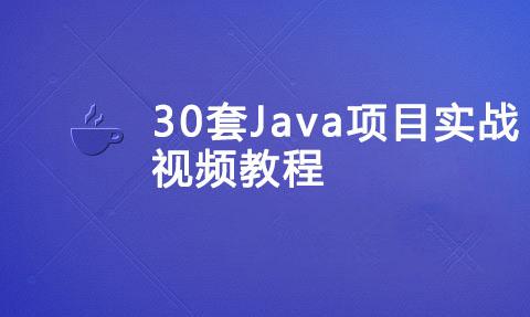 30套Java项目实战视频教程