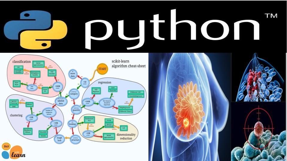 Python机器学习-乳腺癌细胞挖掘【资料完整】