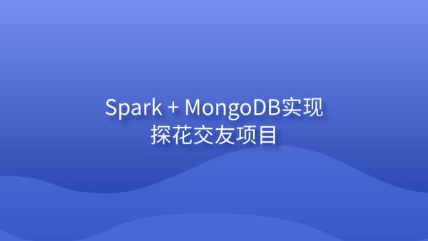 Spark + MongoDB实现探花交友项目