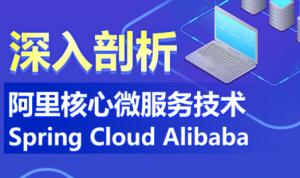 深入剖析阿里核心微服务技术Spring Cloud Alibab