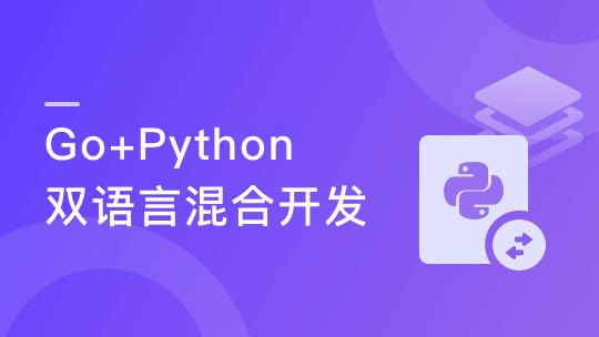 体系课-Go+Python双语言混合开发 盯紧技术先机 抓紧高薪机遇
